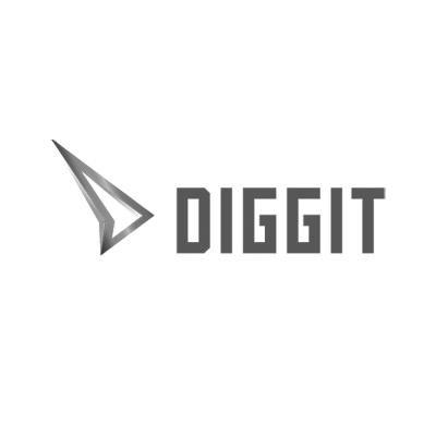Golden diggit award 2016